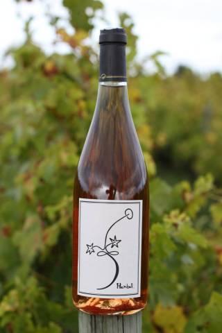 ROSE D'UN JOUR (carton de 6 bouteilles)  soit 12,00 € la bouteille